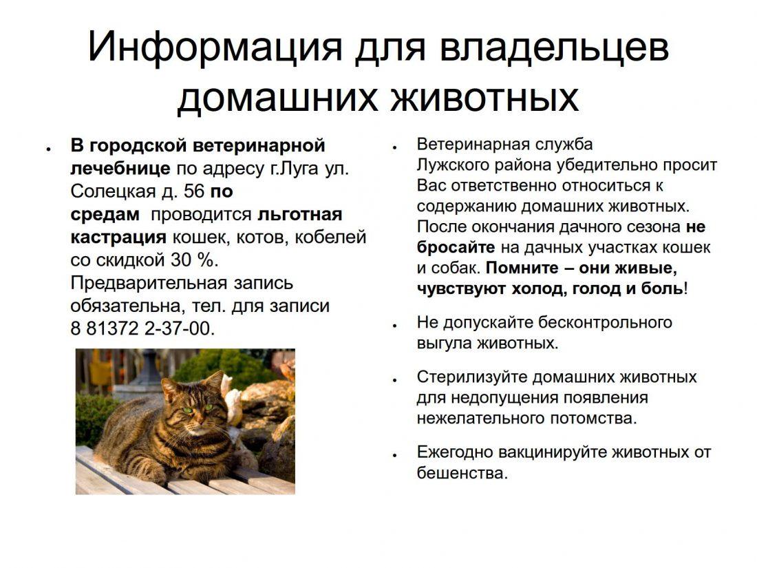 для граждан по животным_1